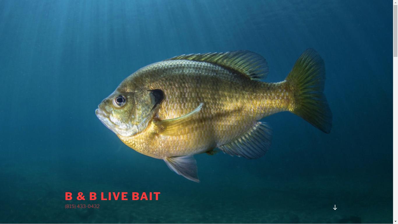 B & B Live Bait